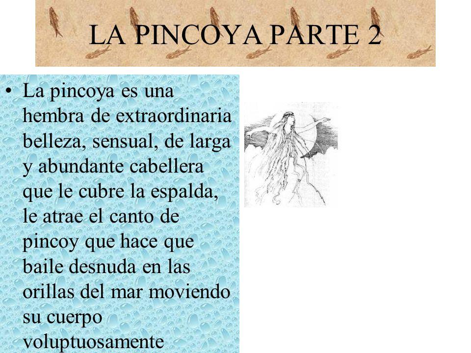 LA PINCOYA PARTE 2 La pincoya es una hembra de extraordinaria belleza, sensual, de larga y abundante cabellera que le cubre la espalda, le atrae el ca