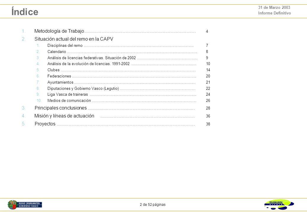 2 de 52 páginas 31 de Marzo 2003 Informe Definitivo Índice 1.Metodología de Trabajo.....................................................................................
