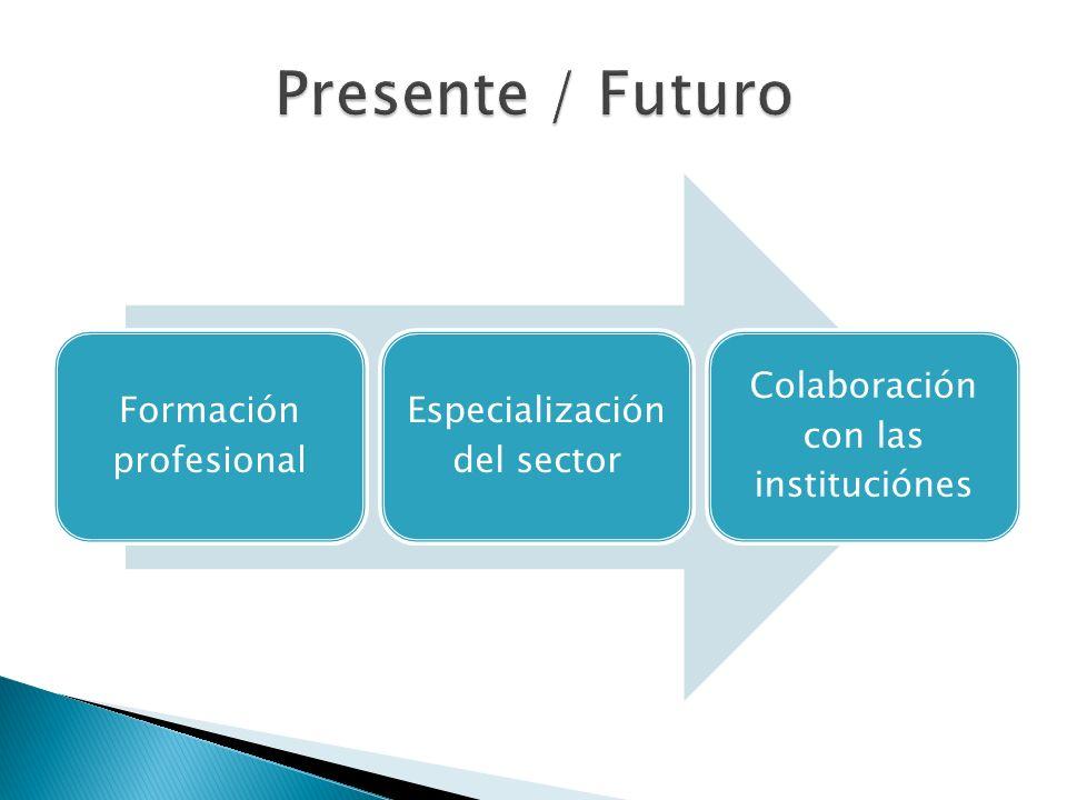 Formación profesional Especialización del sector Colaboración con las instituciónes