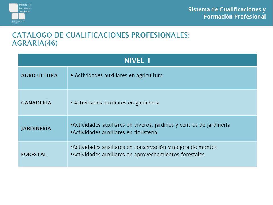 Sistema de Cualificaciones y Formación Profesional CATALOGO DE CUALIFICACIONES PROFESIONALES: AGRARIA(46) NIVEL 1 AGRICULTURA Actividades auxiliares e