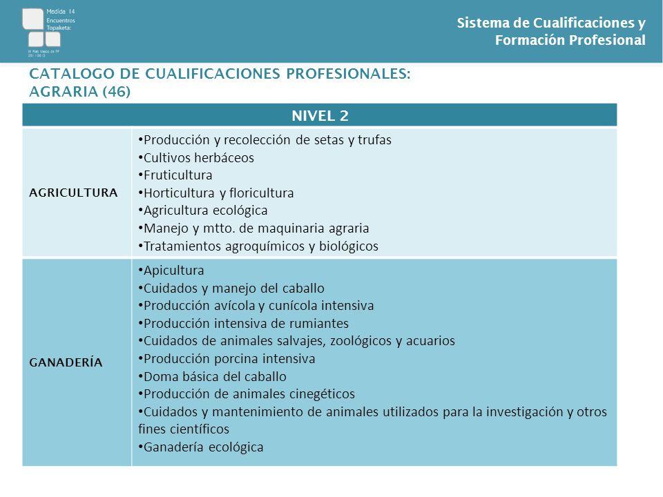 Sistema de Cualificaciones y Formación Profesional NIVEL 2 AGRICULTURA Producción y recolección de setas y trufas Cultivos herbáceos Fruticultura Hort