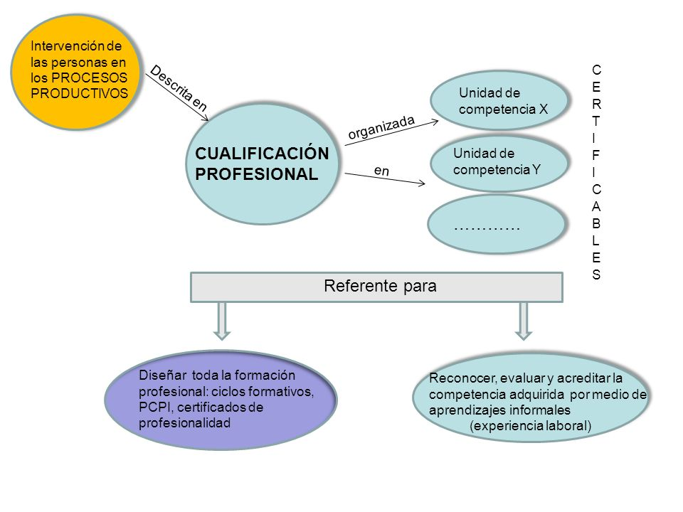 Intervención de las personas en los PROCESOS PRODUCTIVOS CUALIFICACIÓN PROFESIONAL Descrita en Unidad de competencia X organizada en Referente para ………… Diseñar toda la formación profesional: ciclos formativos, PCPI, certificados de profesionalidad Reconocer, evaluar y acreditar la competencia adquirida por medio de aprendizajes informales (experiencia laboral)
