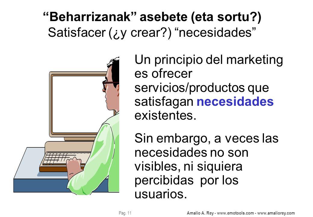 Amalio A. Rey - www.emotools.com - www.amaliorey.com Pag. 11 Beharrizanak asebete (eta sortu?) Satisfacer (¿y crear?) necesidades Un principio del mar