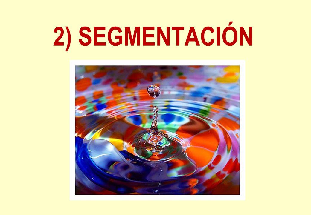 2) SEGMENTACIÓN