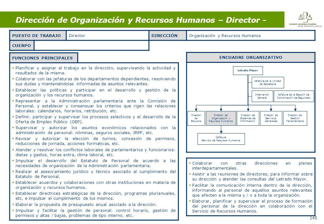 145 Dirección de Organización y Recursos Humanos – Director - FUNCIONES PRINCIPALES Planificar y asignar el trabajo en la dirección, supervisando la actividad y resultados de la misma.