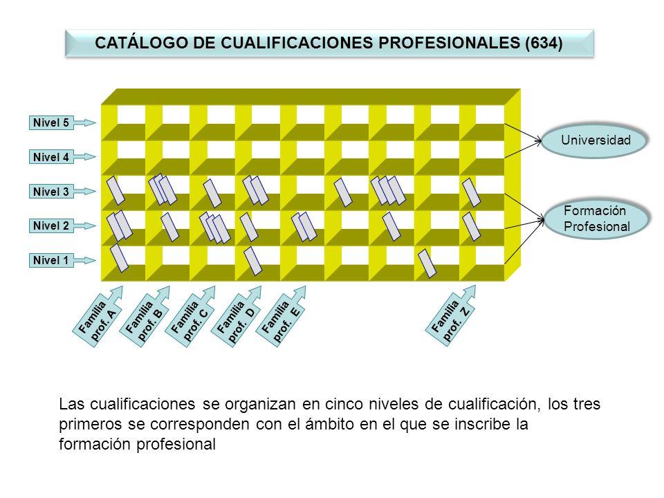 Las cualificaciones se organizan en cinco niveles de cualificación, los tres primeros se corresponden con el ámbito en el que se inscribe la formación