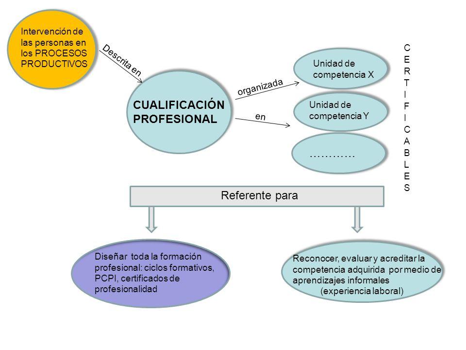Intervención de las personas en los PROCESOS PRODUCTIVOS CUALIFICACIÓN PROFESIONAL Descrita en Unidad de competencia X organizada en Referente para ……