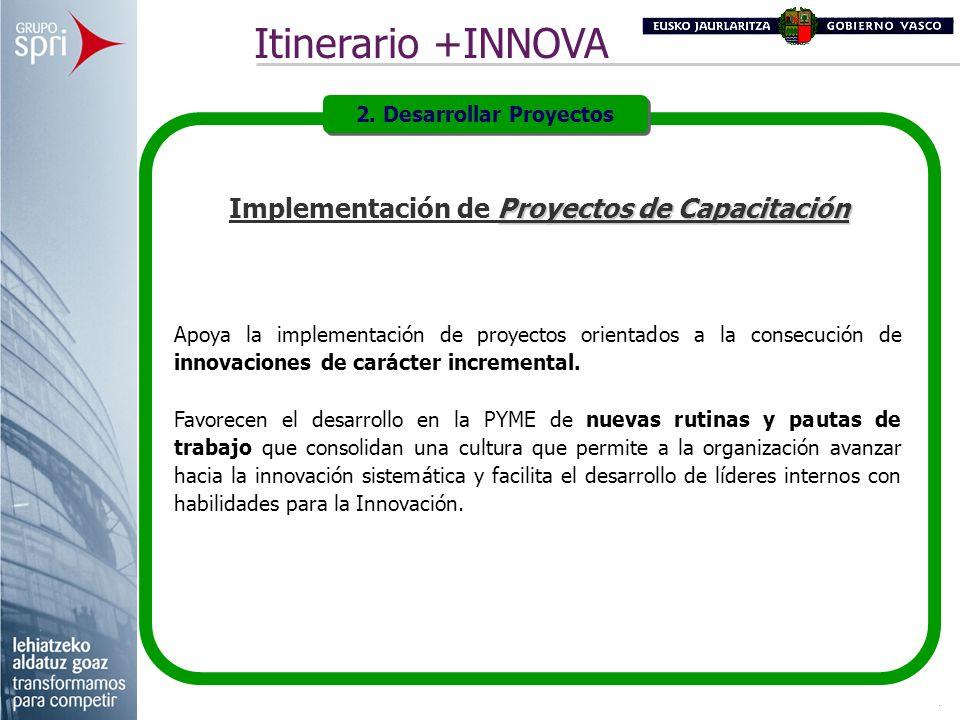 Proyectos de Capacitación Implementación de Proyectos de Capacitación Apoya la implementación de proyectos orientados a la consecución de innovaciones