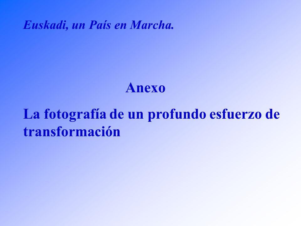 Los Objetivos: 9)Consolidación de una política cultural integradora y abierta al mundo -Desarrollo de un programa vasco de cultura digital -Fomento del uso del Euskera en un contexto plurilingüe -Creación del Observatorio Vasco de la Cultura -Plan de Infraestructuras Culturales -Desarrollo del II Plan de Acción Joven 10)Proyección de Euskadi en el Exterior -Apertura de nuevas Delegaciones en el Exterior -Fomentar la Cooperación Transfronteriza -Potenciar la presencia de Euskadi en los Organos e Instituciones Europeas