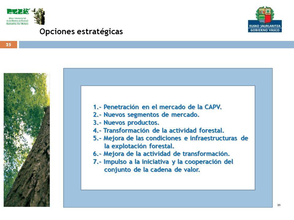 25 Opciones estratégicas 1.- Penetración en el mercado de la CAPV. 2.- Nuevos segmentos de mercado. 3.- Nuevos productos. 4.- Transformación de la act