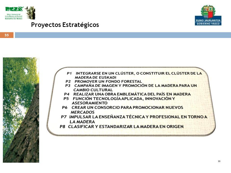 35 Proyectos Estratégicos