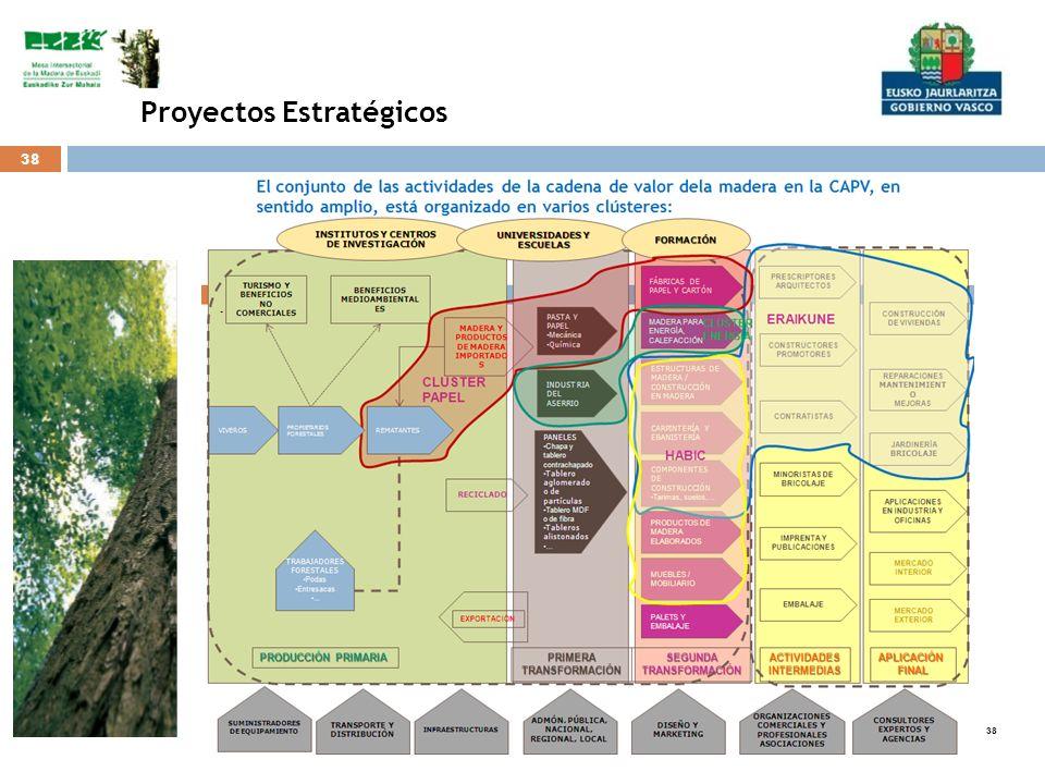 38 Proyectos Estratégicos.