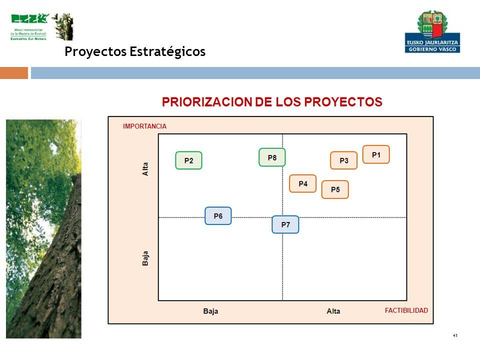 41 Proyectos Estratégicos