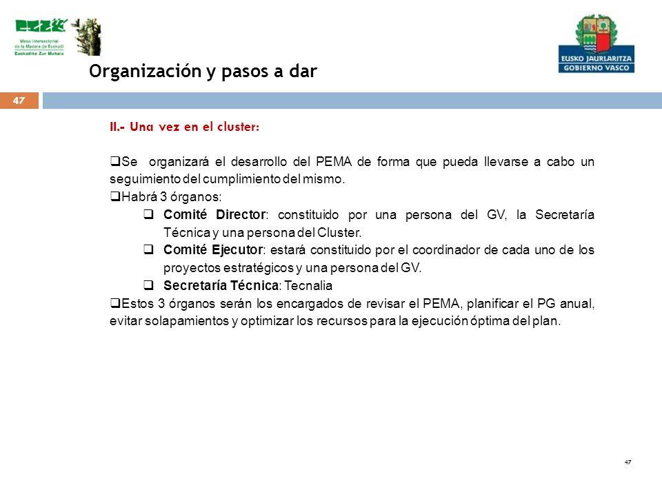 47 Organización y pasos a dar II.- Una vez en el cluster: Se organizará el desarrollo del PEMA de forma que pueda llevarse a cabo un seguimiento del c