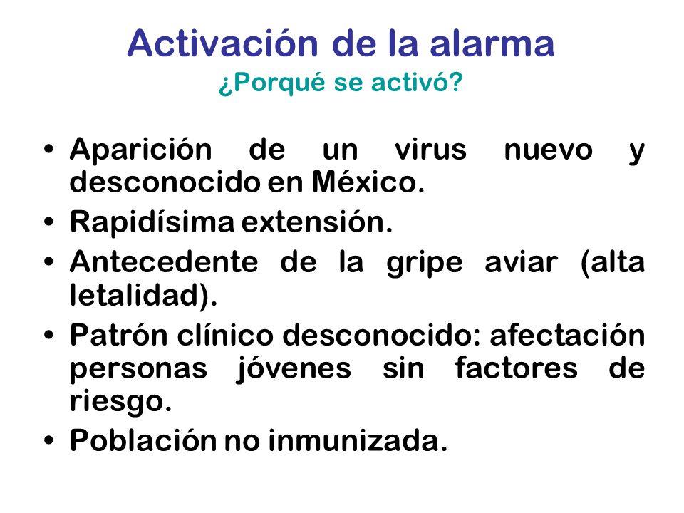 Activación de la alarma ¿Porqué se activó? Aparición de un virus nuevo y desconocido en México. Rapidísima extensión. Antecedente de la gripe aviar (a