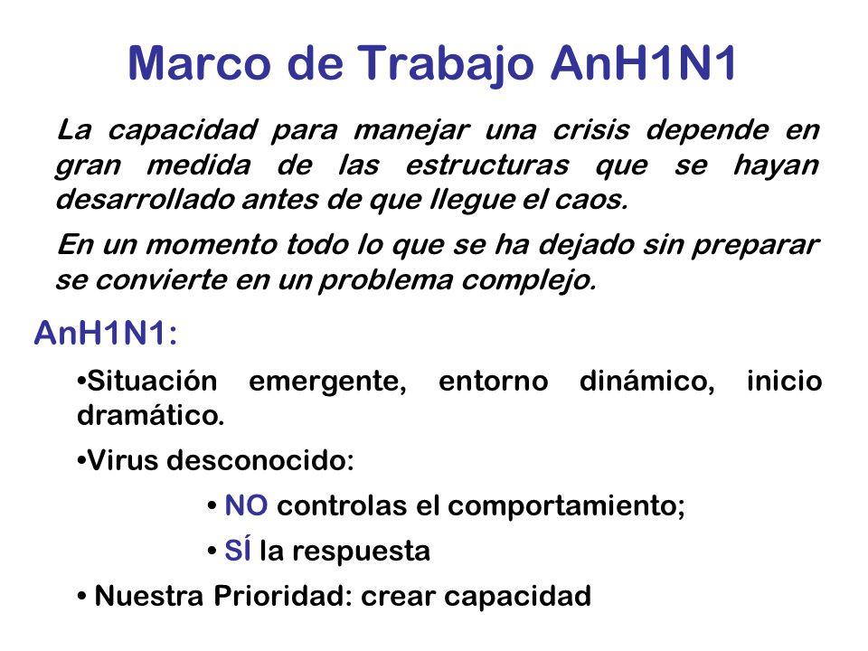 Marco de Trabajo AnH1N1 La capacidad para manejar una crisis depende en gran medida de las estructuras que se hayan desarrollado antes de que llegue e