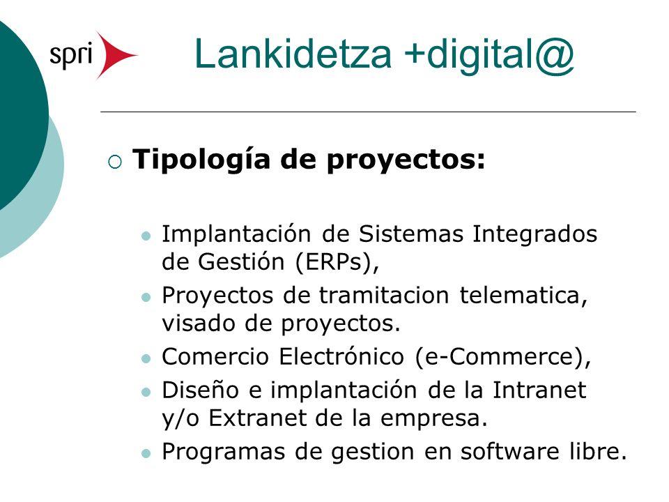 Lankidetza +digital@ Tipología de proyectos: Implantación de Sistemas Integrados de Gestión (ERPs), Proyectos de tramitacion telematica, visado de proyectos.