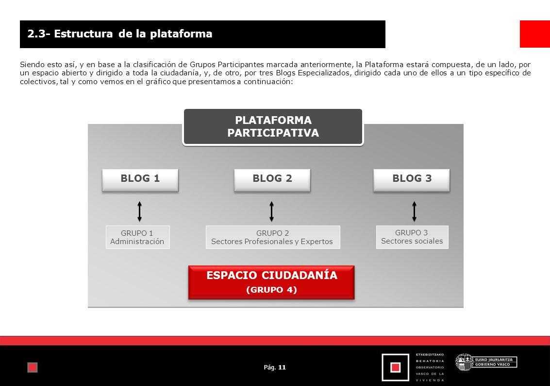 Pág. 11 2.3- Estructura de la plataforma Siendo esto así, y en base a la clasificación de Grupos Participantes marcada anteriormente, la Plataforma es