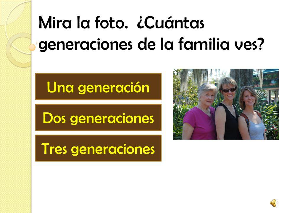 ¿Qué es una generación? Un trabajo que yo hago en mi casa. Un grupo de personas que viven en un lugar Grupo de personas de la familia con más o menos