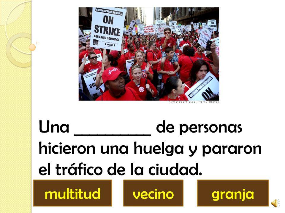Una __________ de personas hicieron una huelga y pararon el tráfico de la ciudad.