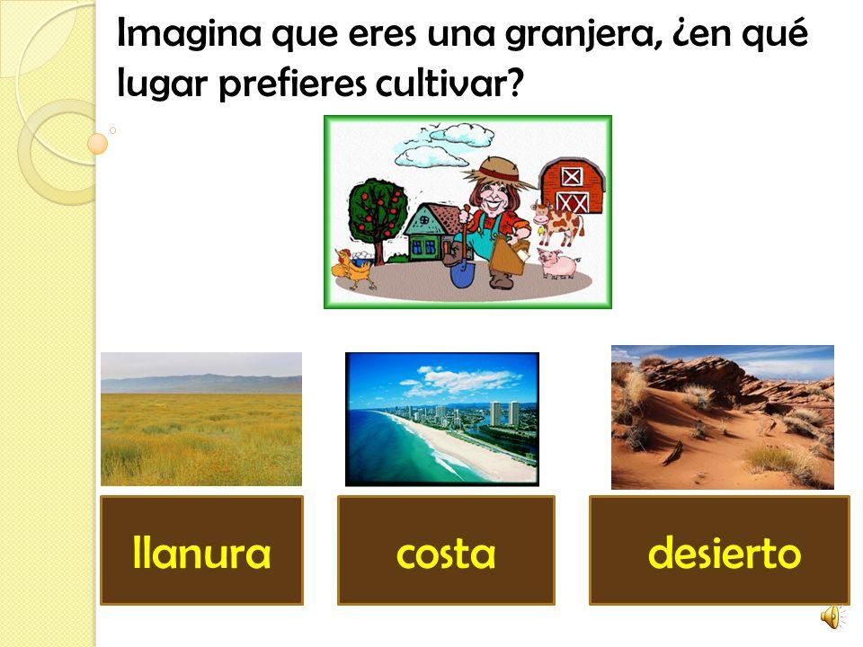 Imagina que eres una granjera, ¿en qué lugar prefieres cultivar? costa desiertollanura