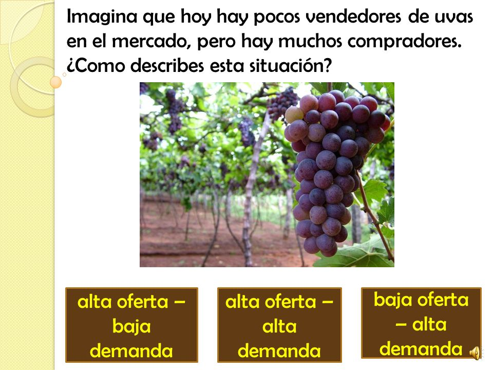 Imagina que hoy hay pocos vendedores de uvas en el mercado, pero hay muchos compradores.
