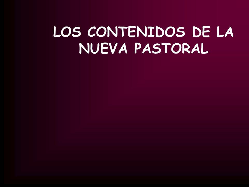LOS CONTENIDOS DE LA NUEVA PASTORAL