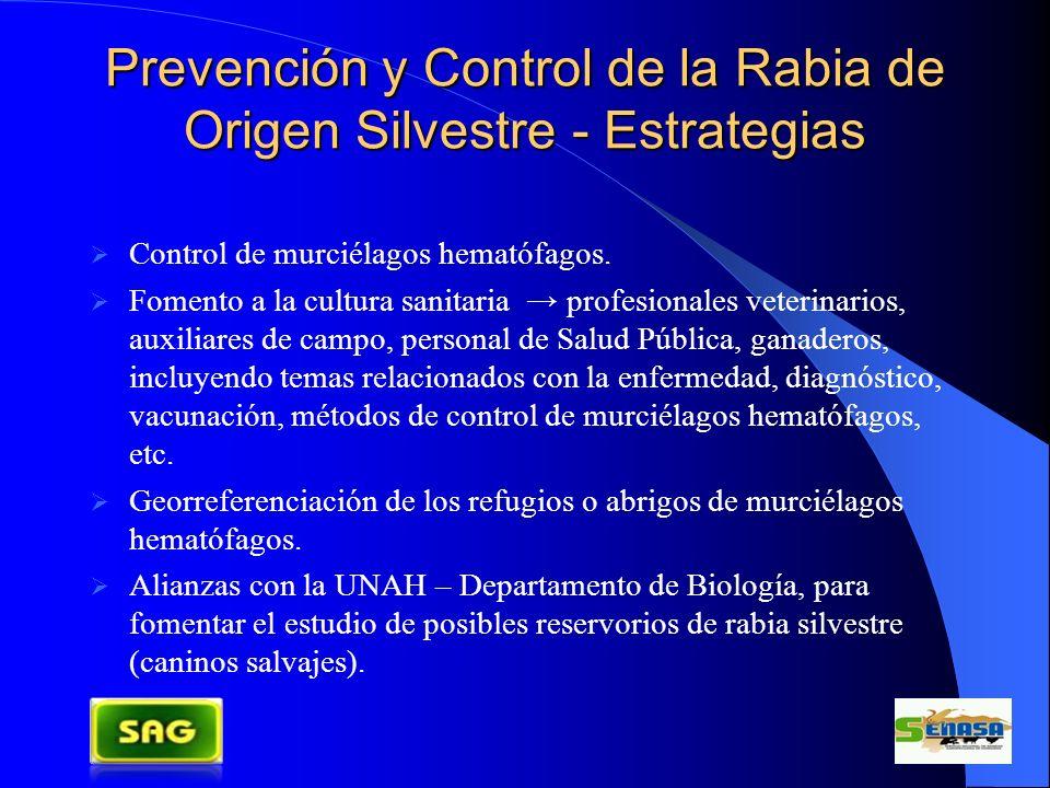 Prevención y Control de la Rabia de Origen Silvestre - Estrategias Control de murciélagos hematófagos. Fomento a la cultura sanitaria profesionales ve