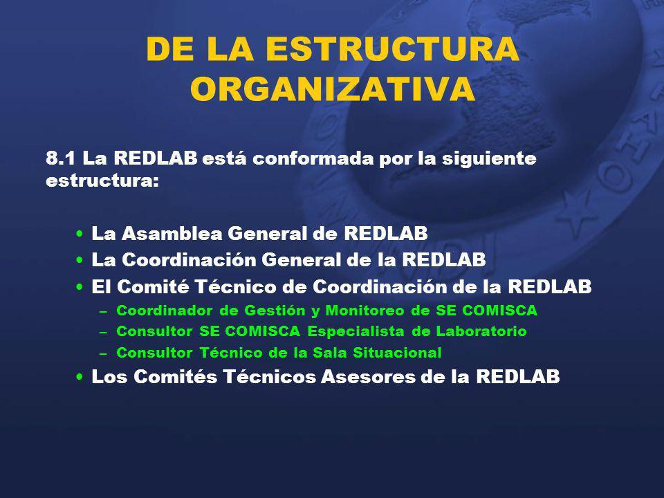 DE LA ESTRUCTURA ORGANIZATIVA 8.1 La REDLAB está conformada por la siguiente estructura: La Asamblea General de REDLAB La Coordinación General de la R