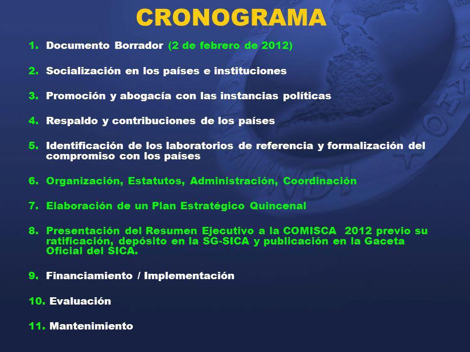CRONOGRAMA 1.Documento Borrador (2 de febrero de 2012) 2.Socialización en los países e instituciones 3.Promoción y abogacía con las instancias polític