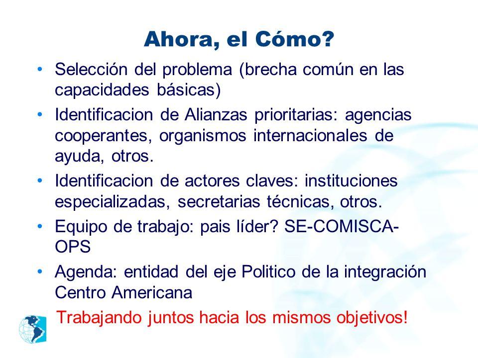 Ahora, el Cómo? Selección del problema (brecha común en las capacidades básicas) Identificacion de Alianzas prioritarias: agencias cooperantes, organi