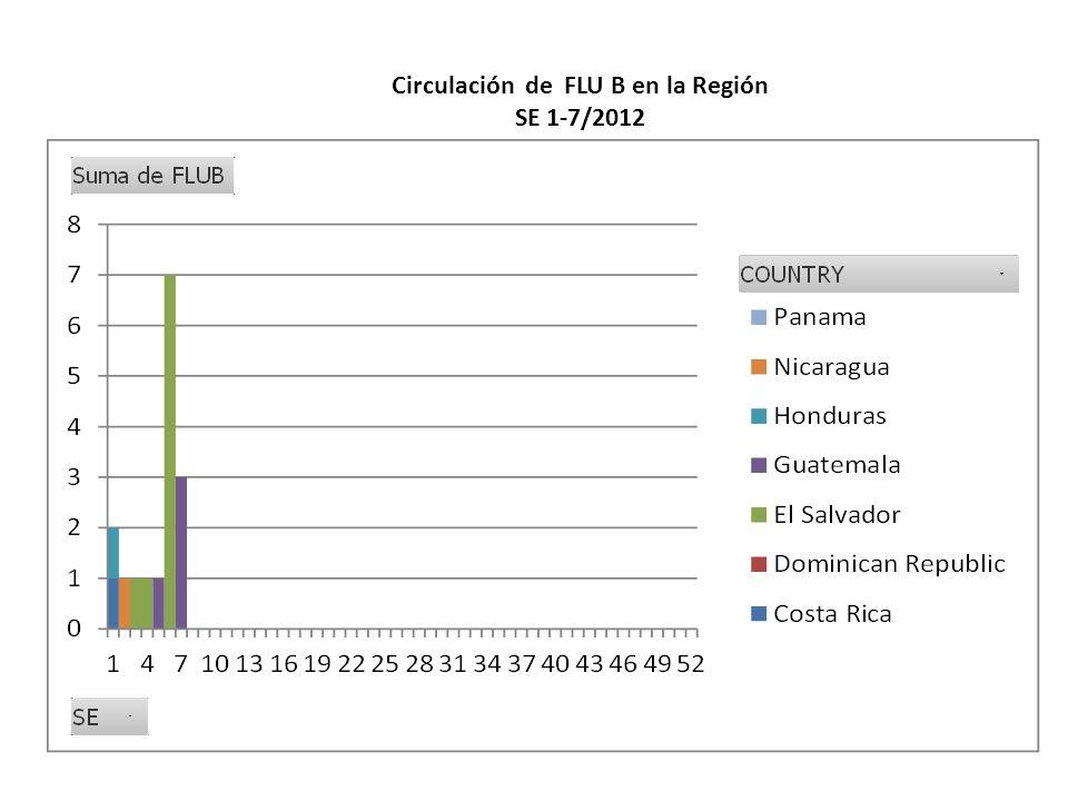 Circulación de FLU B en la Región SE 1-7/2012