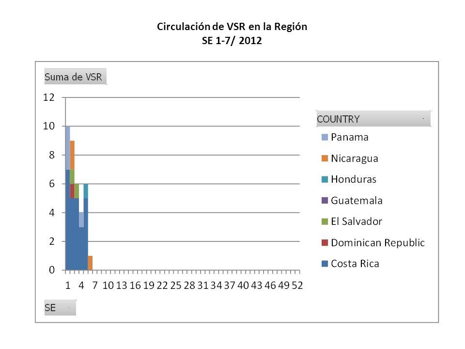 Circulación de VSR en la Región SE 1-7/ 2012