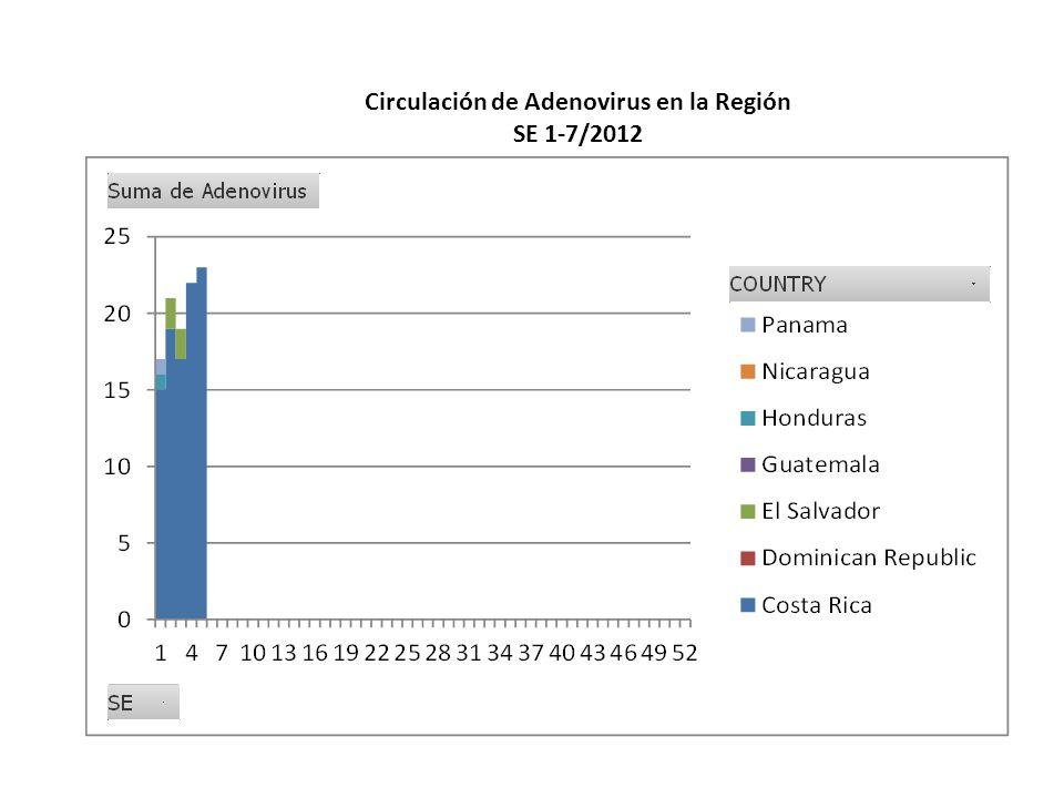 Circulación de Adenovirus en la Región SE 1-7/2012