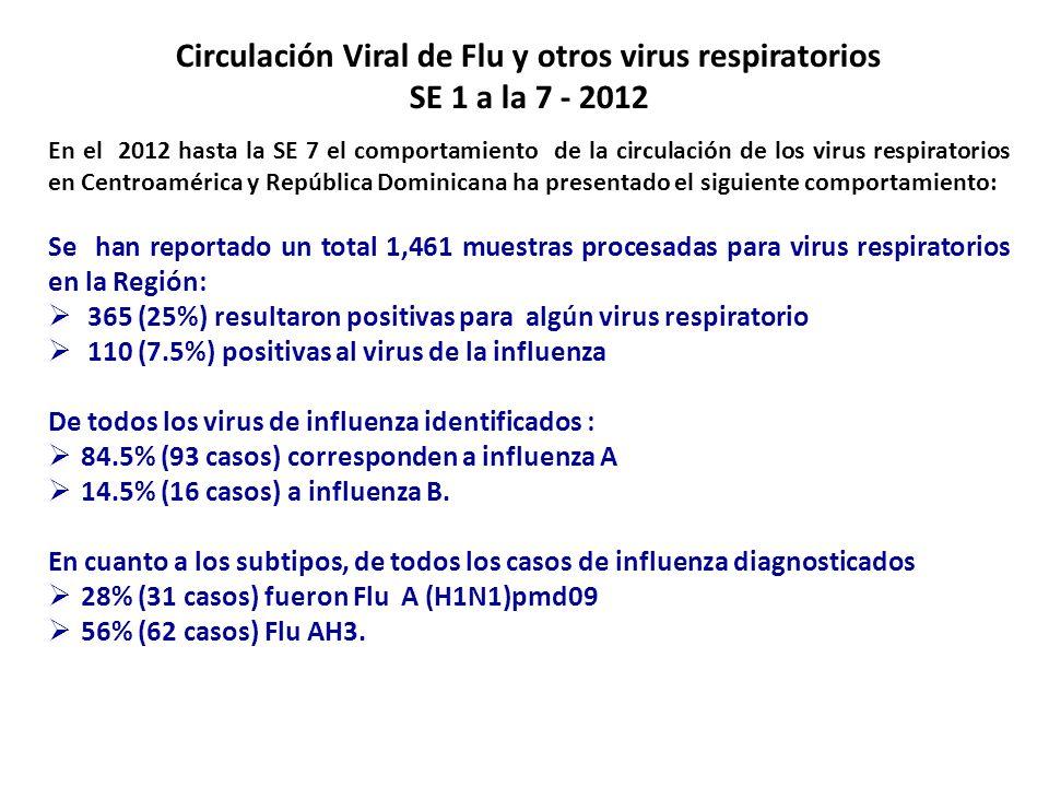 Circulación Viral de Flu y otros virus respiratorios SE 1 a la 7 - 2012 En el 2012 hasta la SE 7 el comportamiento de la circulación de los virus resp