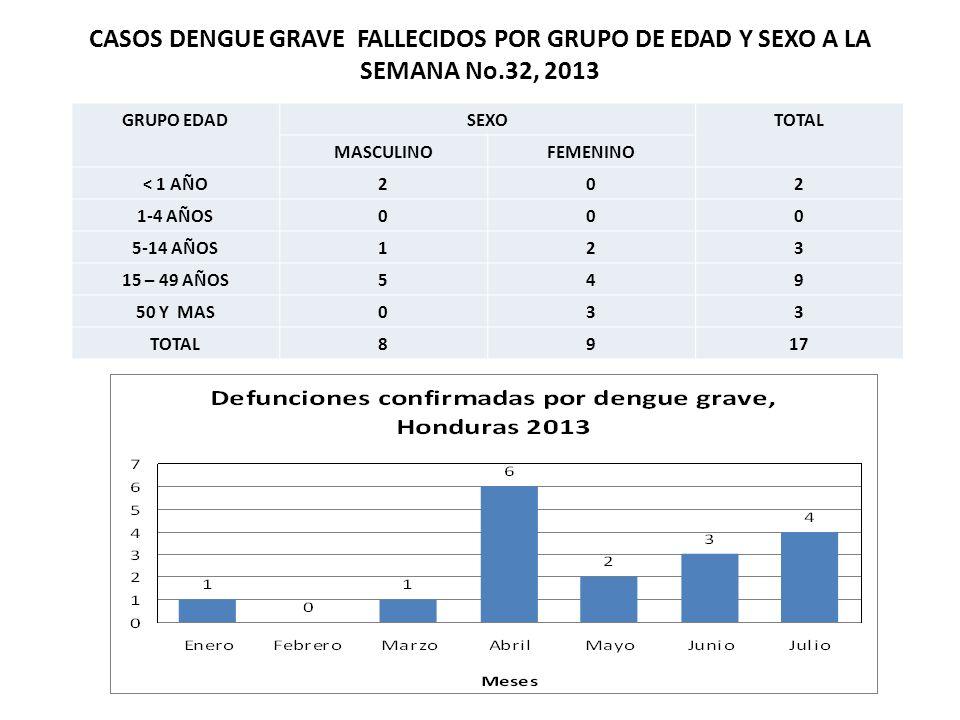CASOS DENGUE GRAVE FALLECIDOS POR GRUPO DE EDAD Y SEXO A LA SEMANA No.32, 2013 GRUPO EDADSEXOTOTAL MASCULINOFEMENINO < 1 AÑO202 1-4 AÑOS000 5-14 AÑOS1
