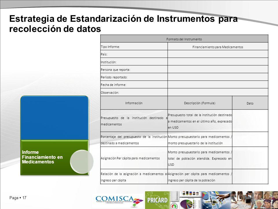 Page 17 Estrategia de Estandarización de Instrumentos para recolección de datos Informe Financiamiento en Medicamentos Formato del Instrumento Tipo In