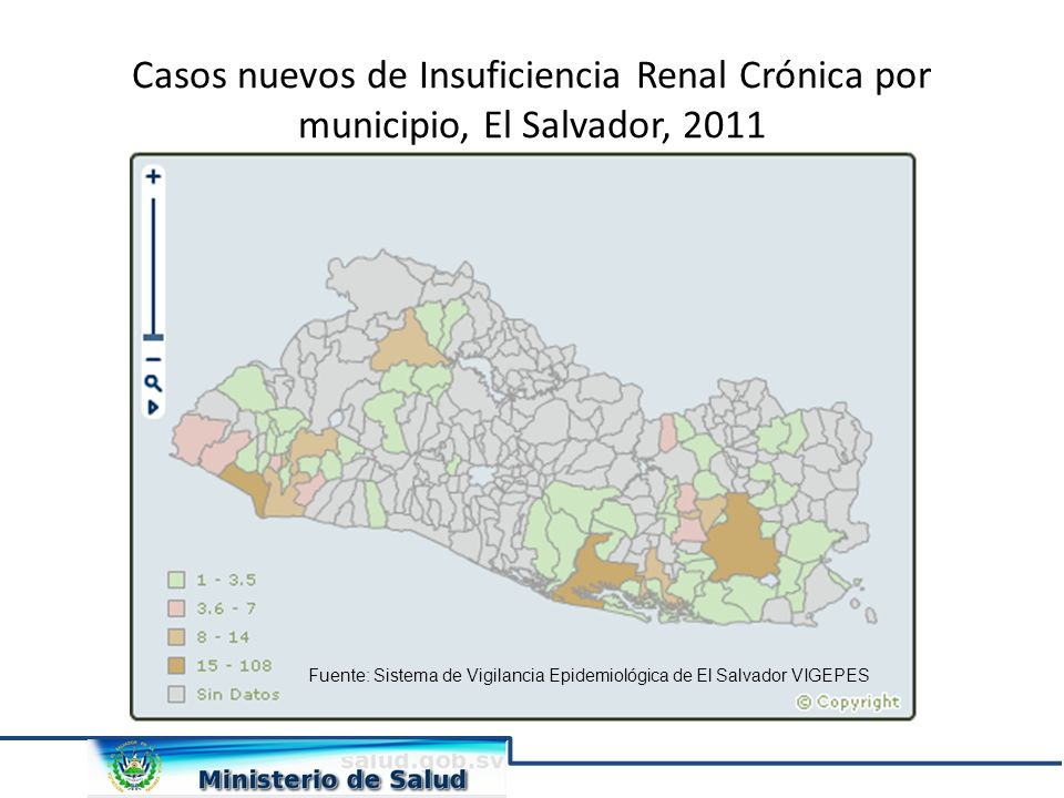 Casos nuevos de Insuficiencia Renal Crónica por municipio, El Salvador, 2011 Fuente: Sistema de Vigilancia Epidemiológica de El Salvador VIGEPES