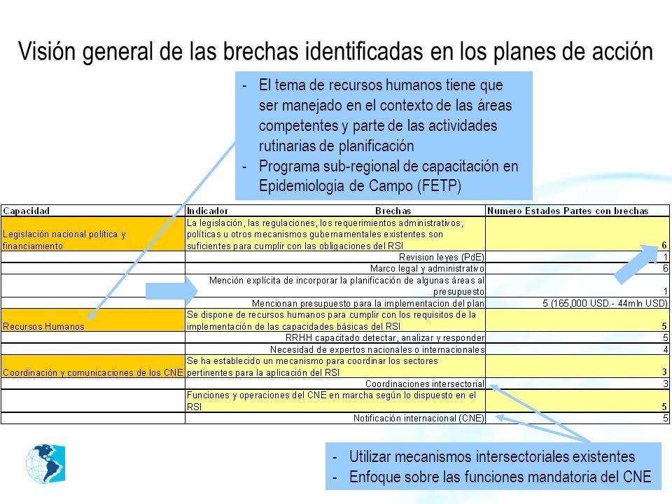 Visión general de las brechas identificadas en los planes de acción -Utilizar mecanismos intersectoriales existentes -Enfoque sobre las funciones mandatoria del CNE -El tema de recursos humanos tiene que ser manejado en el contexto de las áreas competentes y parte de las actividades rutinarias de planificación -Programa sub-regional de capacitación en Epidemiologia de Campo (FETP)