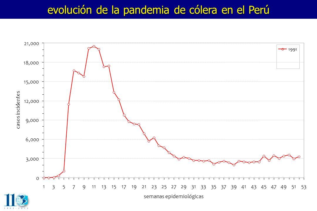 evolución de la pandemia de cólera en el Perú 1357911131517192123252729313335373941434547495153 semanas epidemiológicas casos incidentes 0 3,000 6,000 9,000 12,000 15,000 18,000 21,000 1991 1992