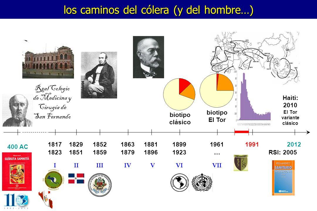 los caminos del cólera (y del hombre…) 400 AC 1817 1823 1829 1851 1852 1859 1863 1879 1881 1896 1899 1923 1961 … 19912012 IIIIIIVVIVVII biotipo El Tor