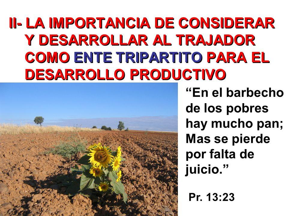 II- LA IMPORTANCIA DE CONSIDERAR Y DESARROLLAR AL TRAJADOR COMO ENTE TRIPARTITO PARA EL DESARROLLO PRODUCTIVO En el barbecho de los pobres hay mucho p