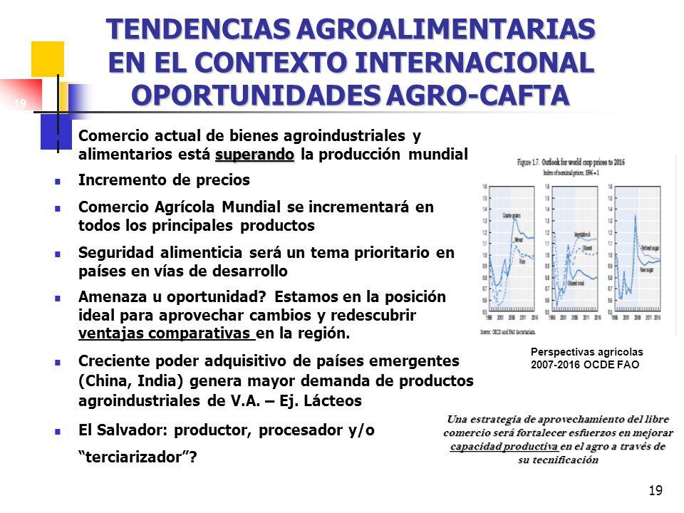 19 TENDENCIAS AGROALIMENTARIAS EN EL CONTEXTO INTERNACIONAL OPORTUNIDADES AGRO-CAFTA superando Comercio actual de bienes agroindustriales y alimentari