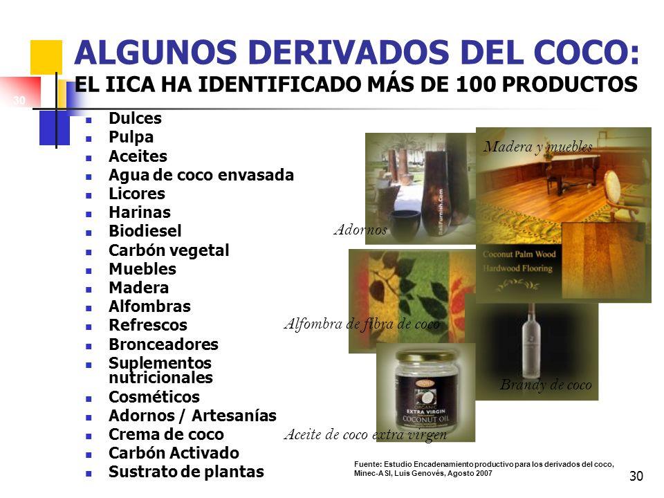 30 ALGUNOS DERIVADOS DEL COCO: EL IICA HA IDENTIFICADO MÁS DE 100 PRODUCTOS Dulces Pulpa Aceites Agua de coco envasada Licores Harinas Biodiesel Carbó