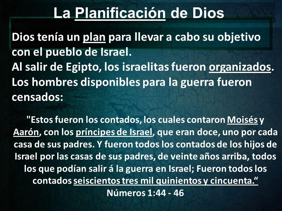 La Organización de Dios Los levitas, a cargo del tabernáculo fueron contados, organizados y, por medio de una ceremonia limpiados y dedicados.