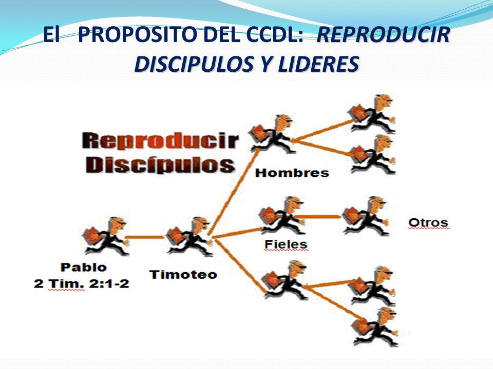 El PROPOSITO DEL CCDL: R EPRODUCIR DISCIPULOS Y LIDERES