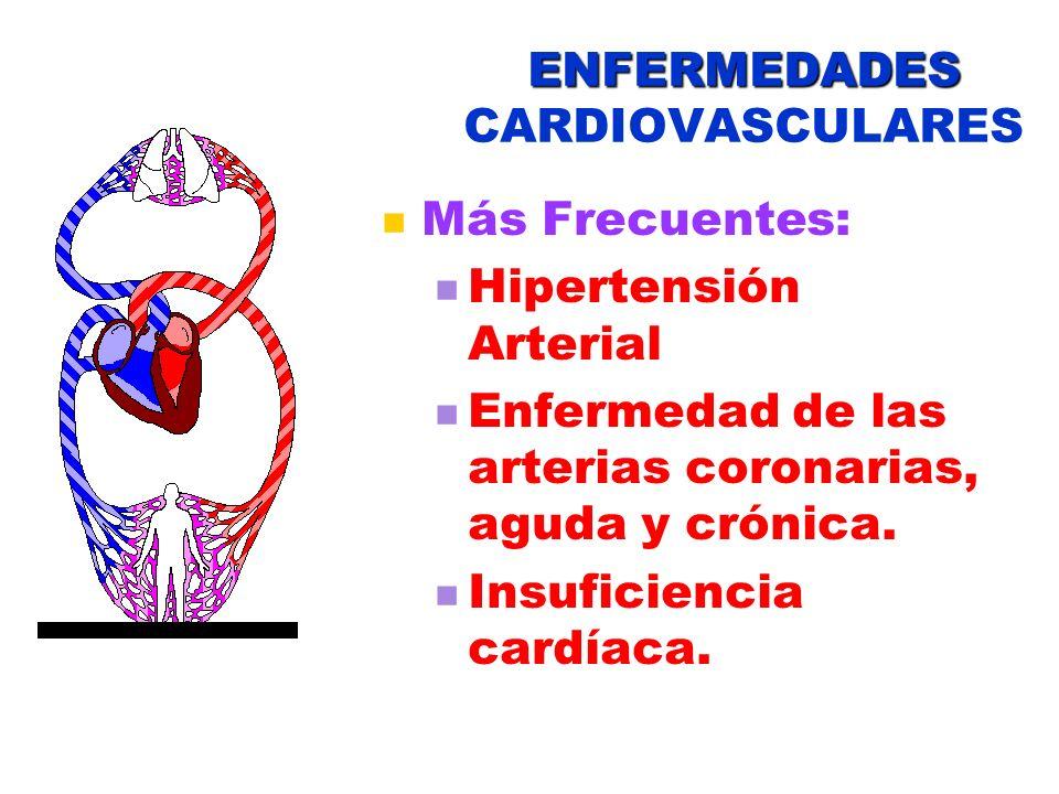 ENFERMEDADES ENFERMEDADES CARDIOVASCULARES Más Frecuentes: Hipertensión Arterial Enfermedad de las arterias coronarias, aguda y crónica. Insuficiencia