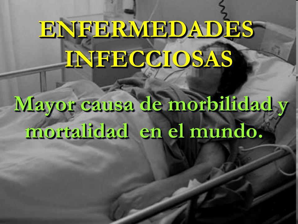 ENFERMEDADES INFECCIOSAS Mayor causa de morbilidad y mortalidad en el mundo.
