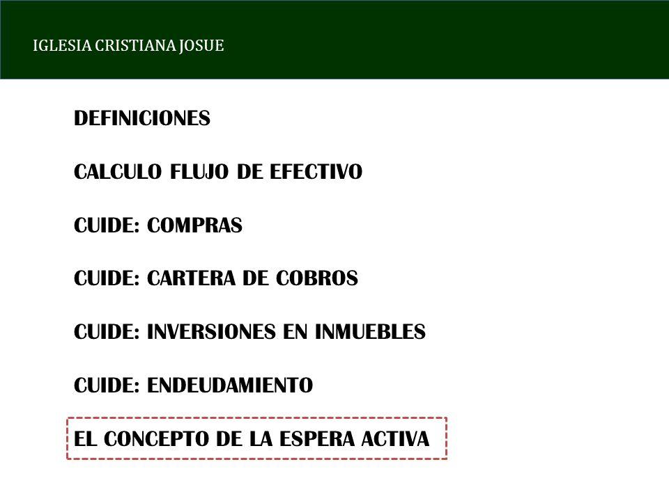 DEFINICIONES CALCULO FLUJO DE EFECTIVO CUIDE: COMPRAS CUIDE: CARTERA DE COBROS CUIDE: INVERSIONES EN INMUEBLES CUIDE: ENDEUDAMIENTO EL CONCEPTO DE LA ESPERA ACTIVA