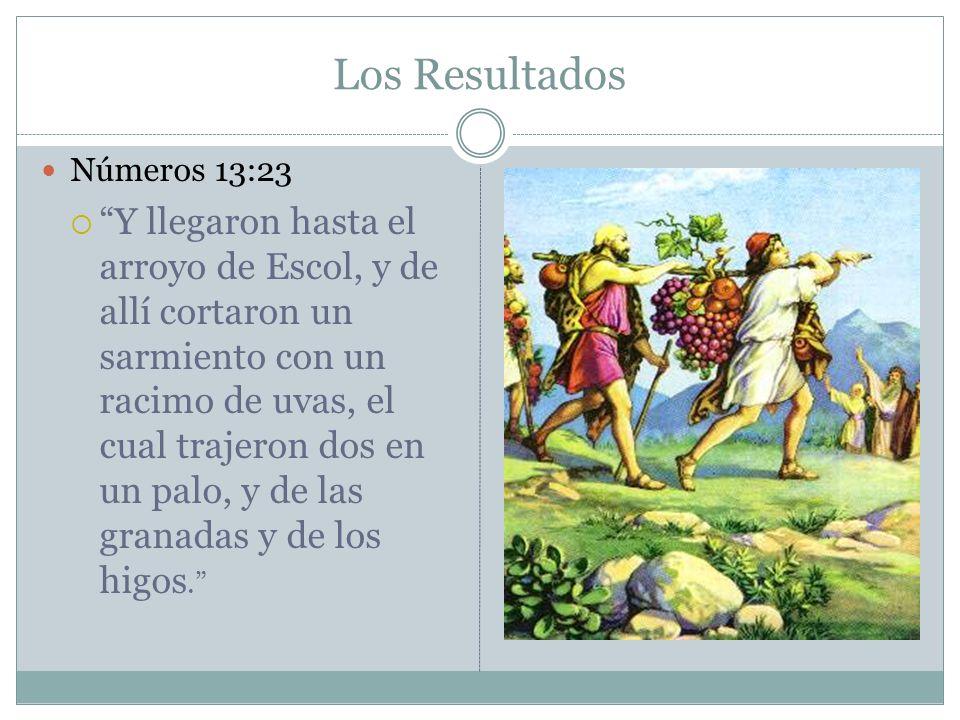 Los Resultados Números 13:23 Y llegaron hasta el arroyo de Escol, y de allí cortaron un sarmiento con un racimo de uvas, el cual trajeron dos en un pa
